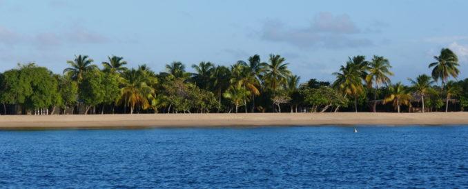 palmenstrand-mayreau-salina-bay