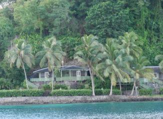 young-island