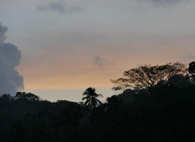 sonnenuntergang-regenwald