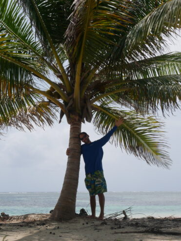 oli-liebt-palmen