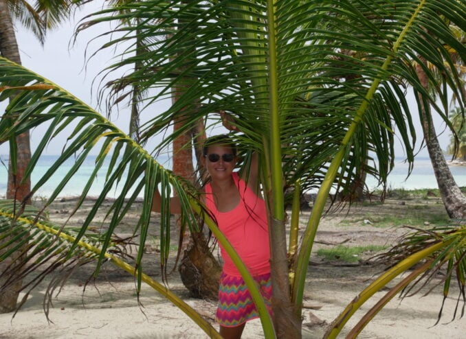 palmenland